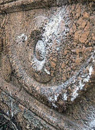 В израильском зоопарке обнаружили два одинаковых римских саркофага