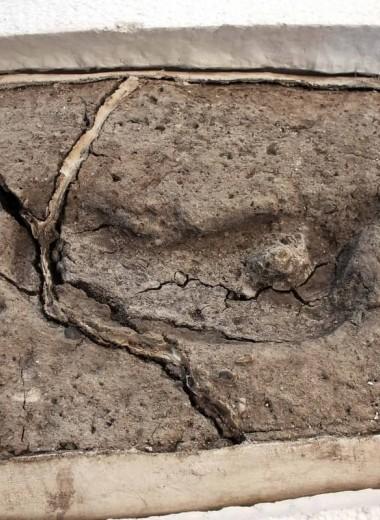 В Чили найден древнейший в Америке след человека