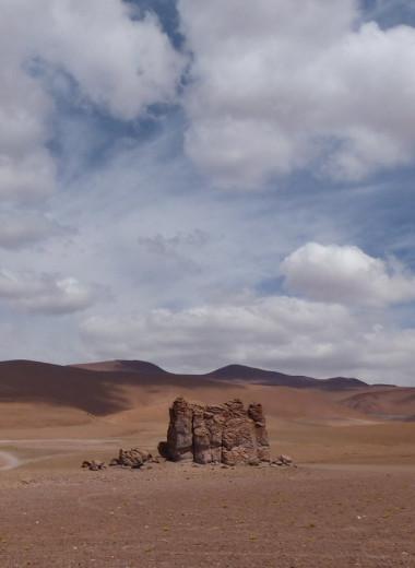 Самая сухая пустыня в мире когда-то была плодородным регионом