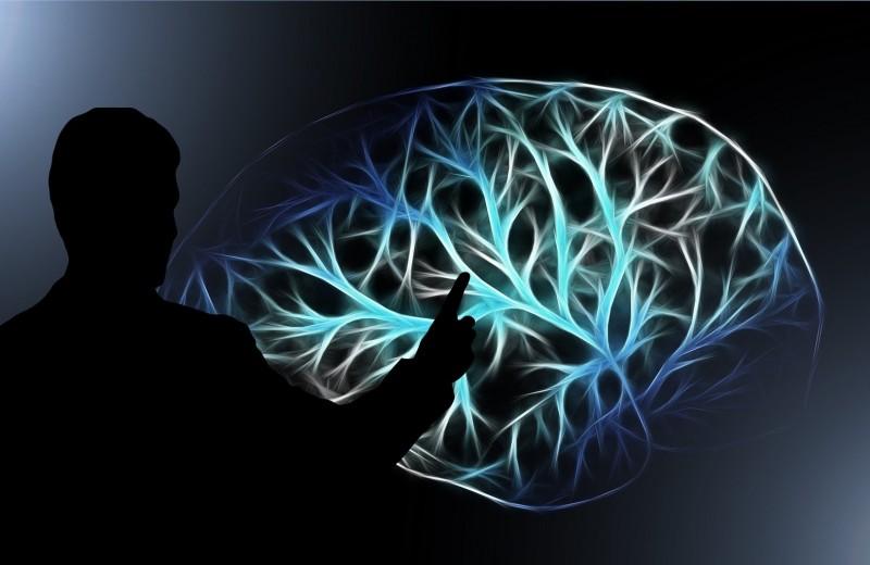 Карантин мозга: что чувствуют те, кто лишен чувств