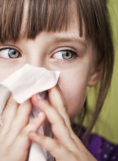 Поллиноз: как лечить аллергический ринит