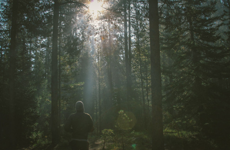Роберт Мур: Следы и тропы