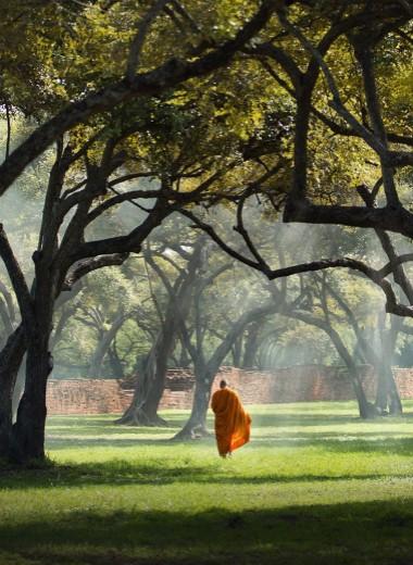 «Прошу, позаботься о маме». Чему учит опыт будийского монаха в общении с родителями