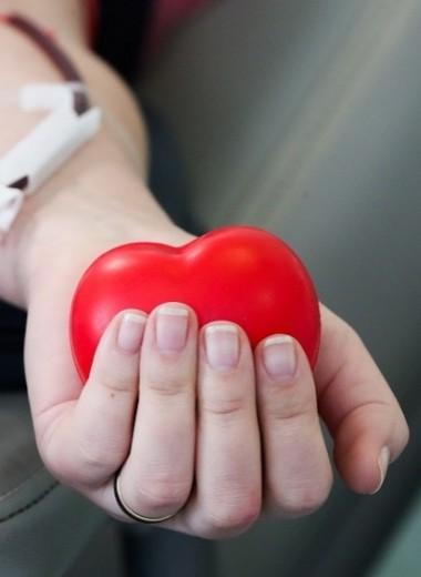 «Я донор, и это очень классно»: предприниматели о том, почему они регулярно сдают кровь