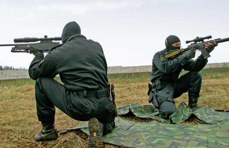 Снайперская винтовка: ликбез для чайников