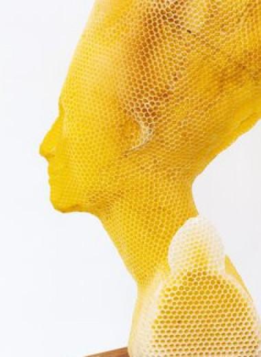 Пчелы помогли художнику создать бюст Нефертити и другие скульптуры из медовых сот