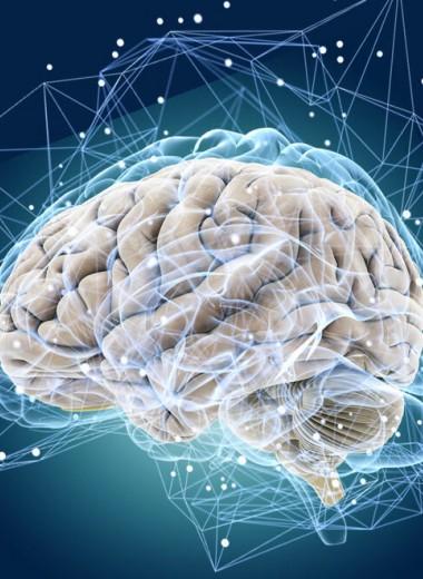Кто такие гидроцефалы: жидкий мозг и современная медицина