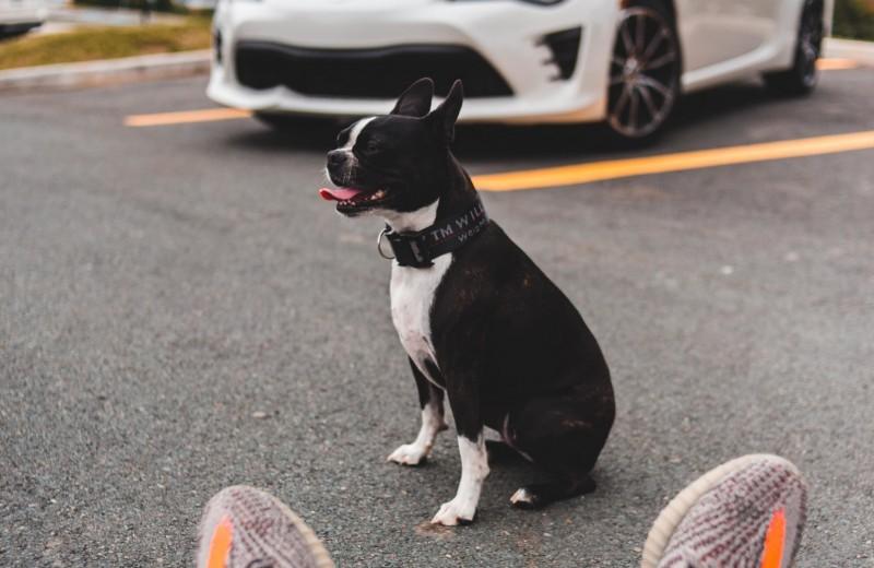 11 лайфхаков для заботливого автовладельца