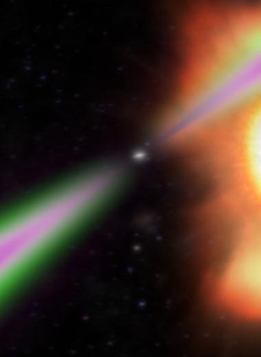 Астрономы обнаружили пять пульсаров-«пауков»