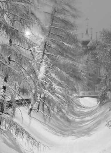 5 причин побывать в Ярославле