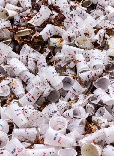 Пластику – нет! В Европе запретят одноразовую посуду