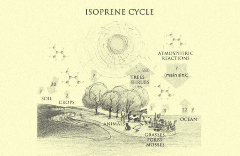 Астрономы предложили использовать изопрен в качестве биомаркера