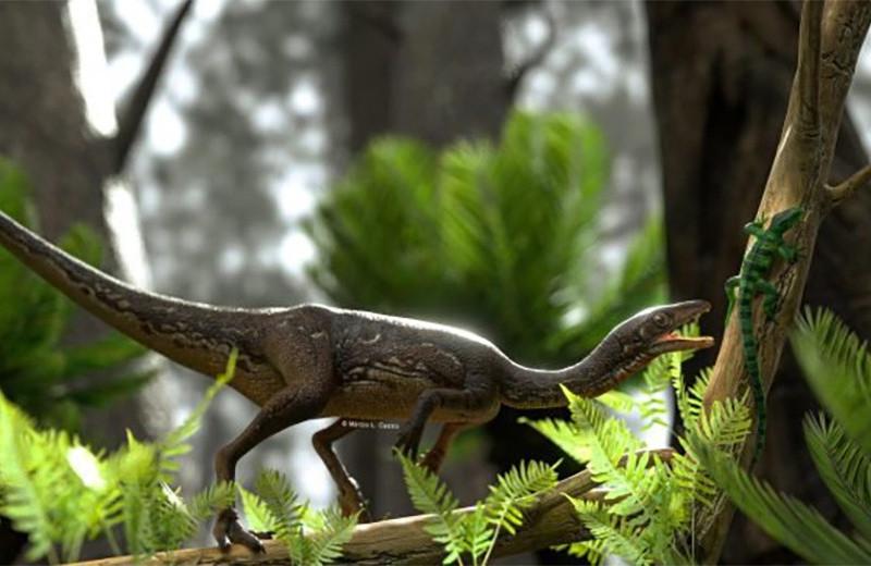 Впервые воссоздан мозг одного из старейших динозавров