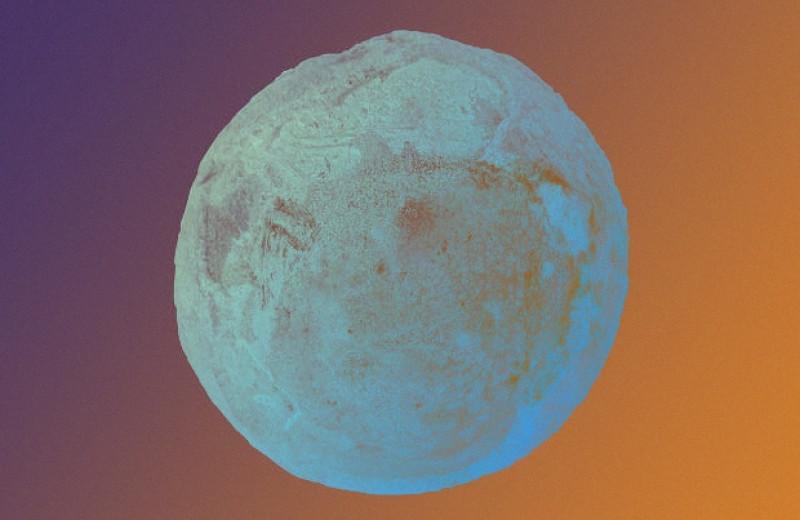 Ископаемое черепашье яйцо удалось классифицировать по эмбриону