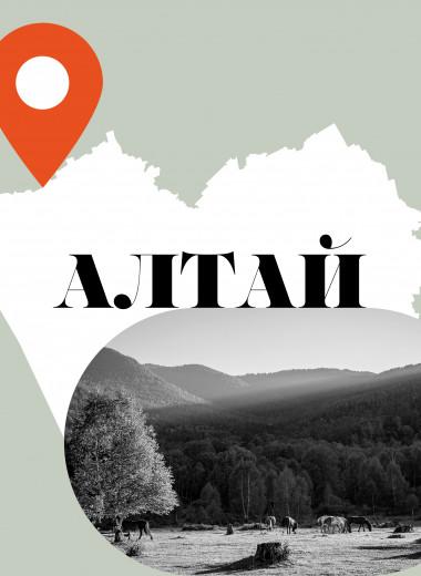 Реки, кони и еда: что посмотреть и попробовать на Алтае