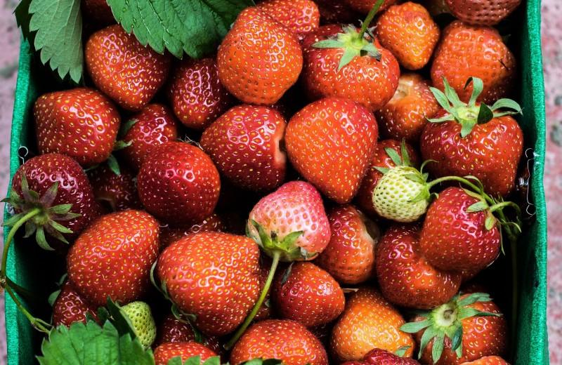 Чем именно полезны ягоды