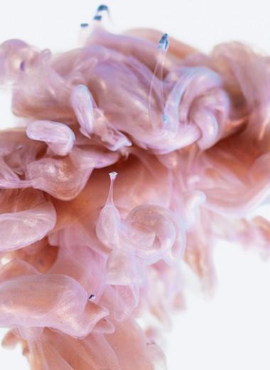 #пронауку: как мозг принимает решения без нашего участия