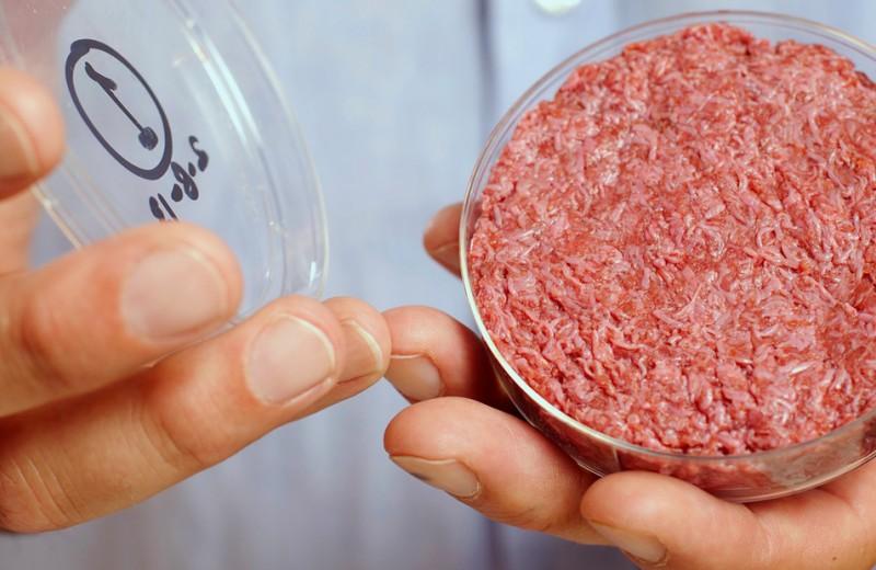 Котлета из пробирки. Может ли вегетарианец есть мясо?