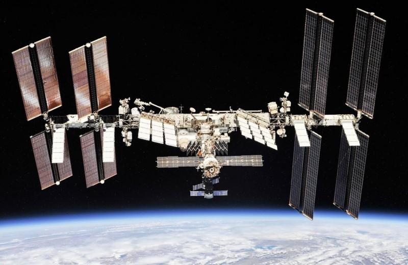 Подведены итоги печати живыми клетками в космосе