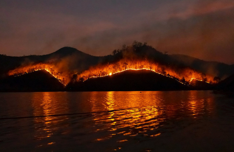 Россия в огне: почему лесные пожары в 2021 году бьют рекорды?