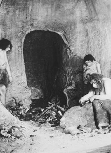 Интимные подробности любви сапиенсов и неандертальцев