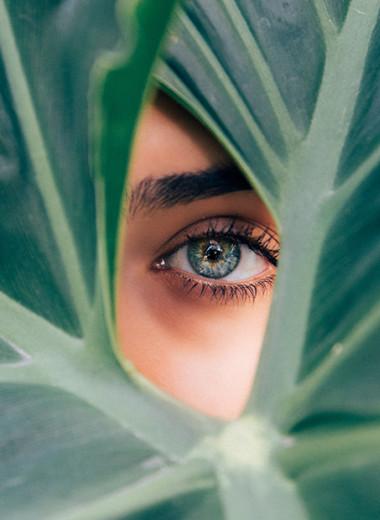Не только морковь: 11 продуктов для острого зрения