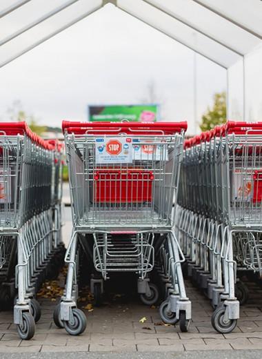 Список покупок: что советуют запасти в России, США, Германии и Швеции