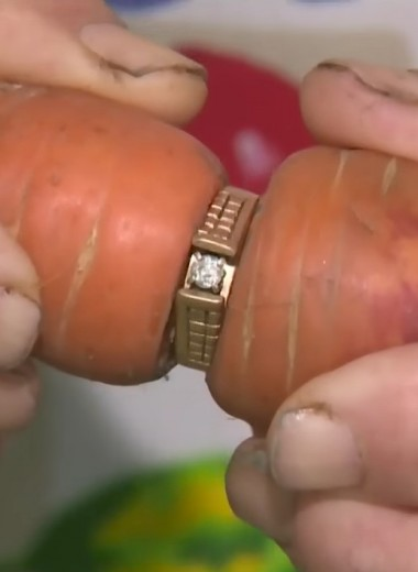 Как потерянное бриллиантовое кольцо нашли на морковке (13 лет спустя!)