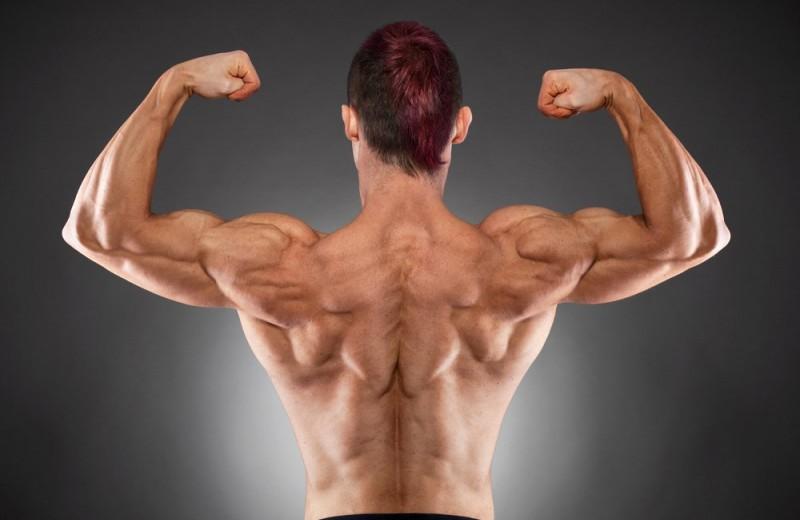 Как накачать плечи: самые эффективные упражнения