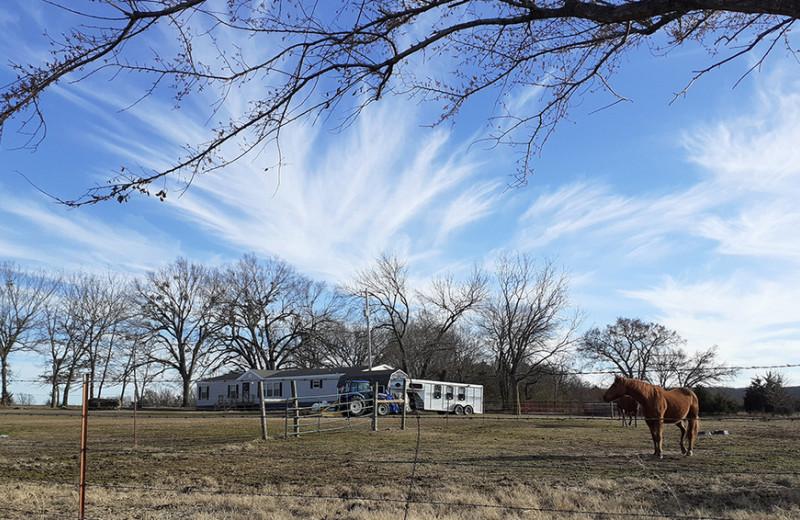 Одна вокруг света. Нефтяные скважины и бывшие плантации Оклахомы