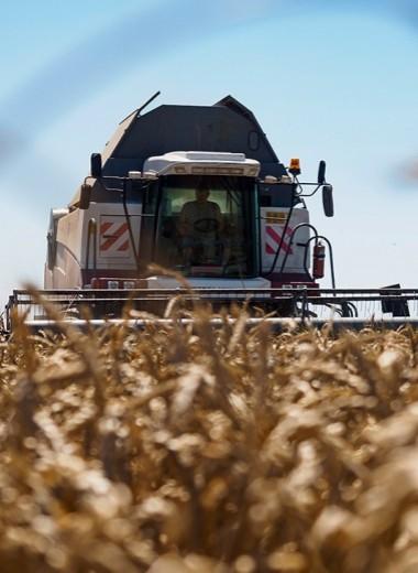 ВТБ и «Эфко» заработают на экспорте хлеба с маслом