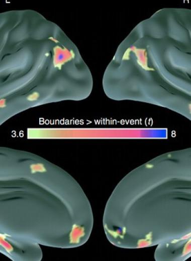 Способность мозга определять границы событий изменилась с возрастом