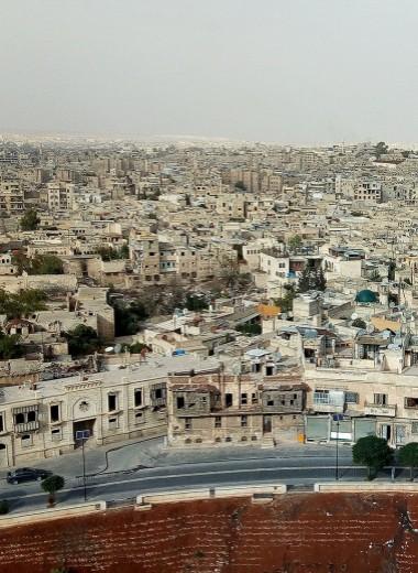 Одна вокруг света. Война и мир в Алеппо