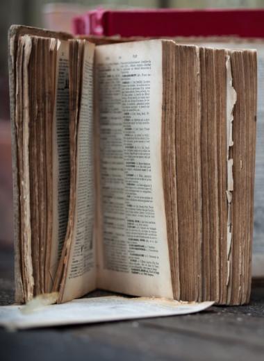 Русские мемуары: лучшие по профессии