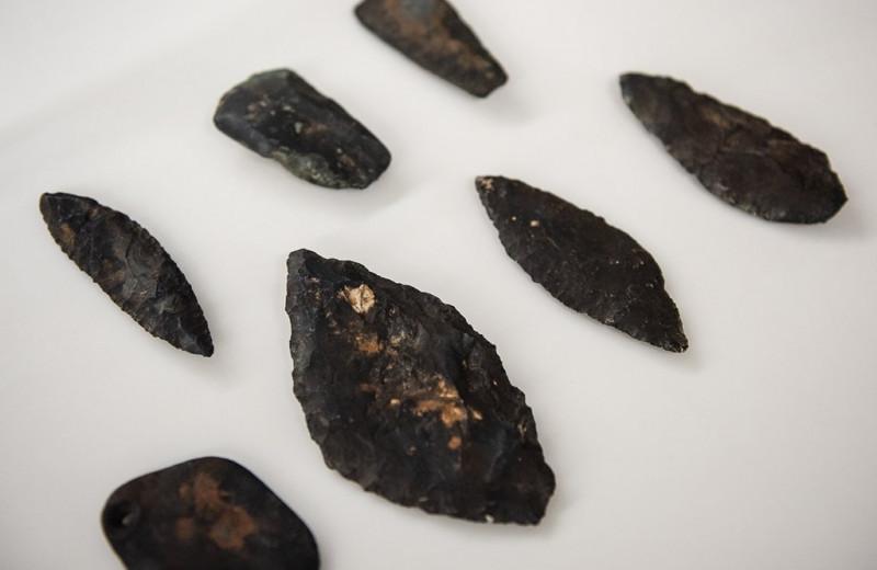 Топи на острове Няша приоткрыли тайны неолита