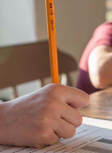 Почему домашнее задание вредит школьникам