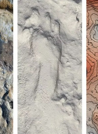 Следы неандертальцев с детьми возрастом 100 000 лет обнаружены на пляже Испании