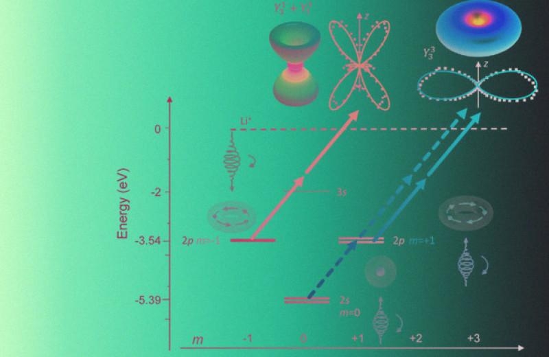 Сильный круговой дихроизм обнаружили при многофотонной ионизации атомов