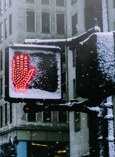 Джон Ирвинг: Дорога тайн