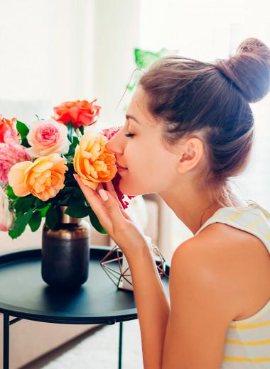 10 домашних растений, которые помогут привлечь любовь и богатство