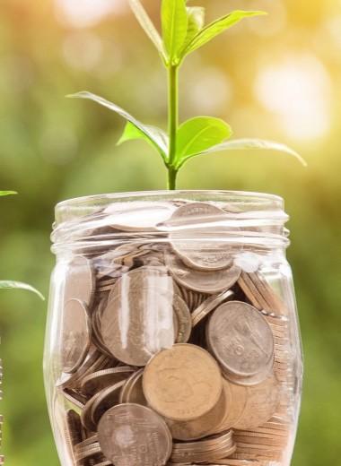 Спаси и сохрани: как в кризис сохранить и приумножить средства