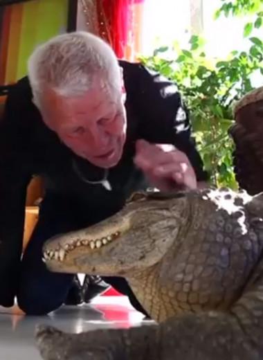 Француз держит у себя 400 рептилий: видео