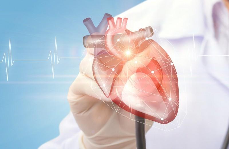 Сердечные электрики: как кардиостимуляторы помогают сердцу биться