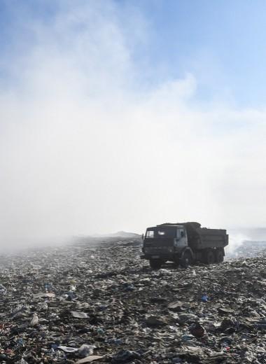 Грязная изнанка: что раздражает россиянв «мусорной реформе»