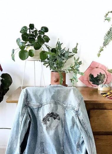 Домашний антистресс: 5 вещей в помощь тем, кто любит комнатные растения