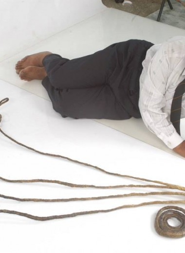 Срезаны самые длинные ногти в мире: видео