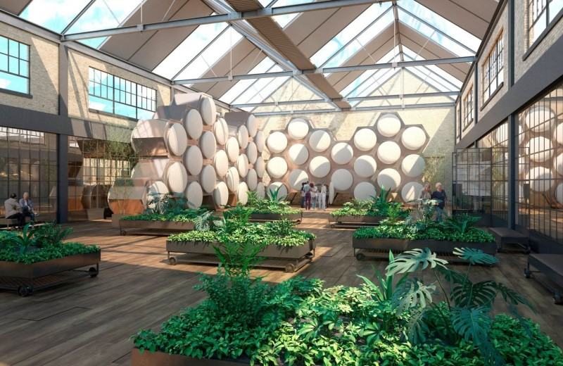 Превращение тел в компост: новая технология захоронений