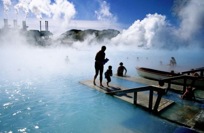 Чистая энергия: как исландцы научились выращивать землянику круглый год