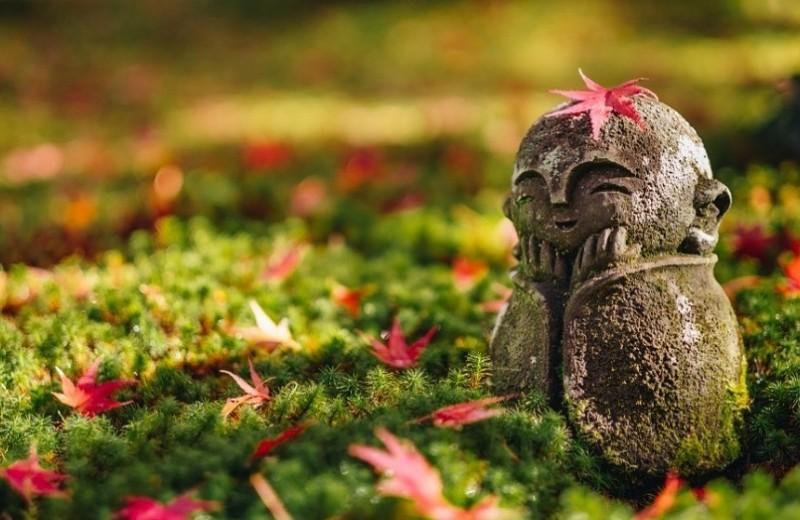 5 секретов счастья от японских мудрецов