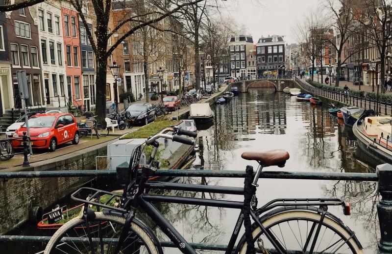 11 слов, помогающих понять нидерландскую культуру